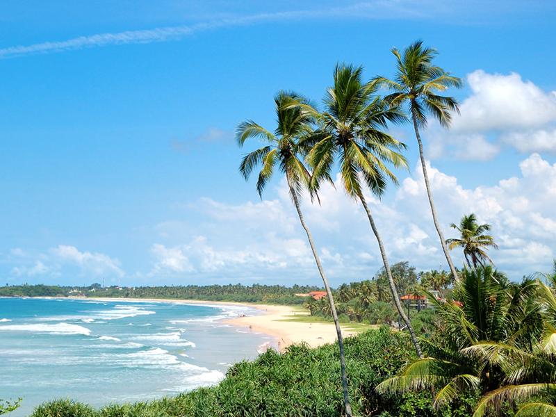Stunning Sri Lanka 5 Days: Bentota - Colombo